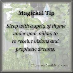 Magickal Tip - Thyme for Visions – Charissas Cauldron