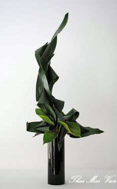 Art Floral Moderne - Art floral Ikebana