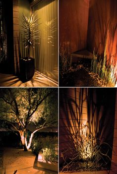 Fantastic ideas of outdoor uplighting...