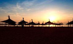 Vama Veche Marie, Louvre, Coral, Sunset, Eyes, Concert, Beach, Nature, Naturaleza