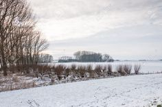 17190444-Dutch-landscape-in-winter-with-snowy-fields-and-bare-trees-Stock-Photo.jpg (1300×863)