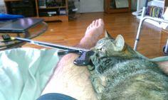P needs the remote
