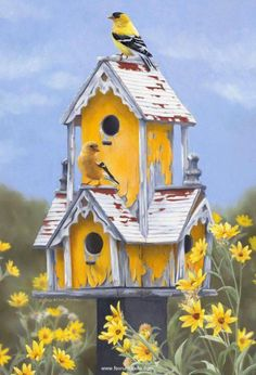So bright and cheery! Bright yellow painted birdhouse, surrounded by yellow flowers, with a yellow bird perched on top.