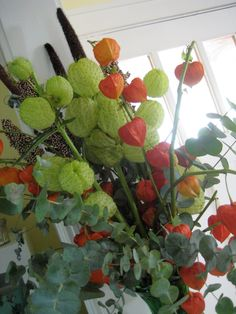 Chinese Lantern Flower in Bouquet | And since they dried so nicely, my fall flowers really should last me ...
