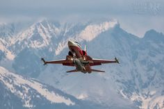 Swiss Air Force F-5E Tiger II Fliegerstaffle 19