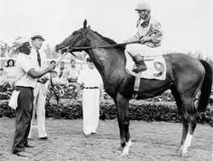 northern dancer - Google Search