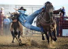 that takes guts  and they say riding a horse is not a sport!!