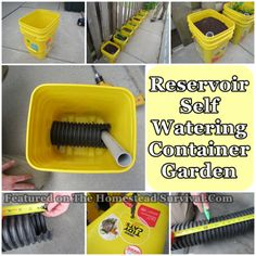 The Homestead Survival | Reservoir Self Watering Container Garden | http://thehomesteadsurvival.com