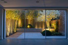 plantas iluminadas en el jardín pequeño