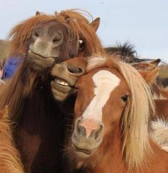 Girls trying to pose for a picture