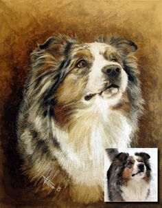 Portrait of Australian Shepherd 'Faye'. Acrylic paint and colored pencils on canvas.