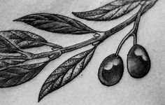 Olive branch - love the shading.
