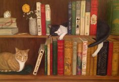 One of my favourites , how cool is this books and cats on a inside wall