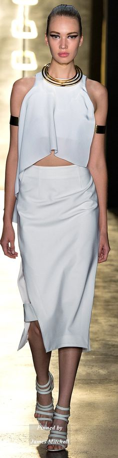 Cushnie et Ochs Collection  Spring 2015 Ready-to-Wear comfortable - www.seacruisevilla.com