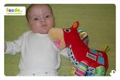Další spokojené miminko s koníkem :)
