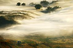 The Mist by Ekkachai Pholrojpanya on - looks so ephemeral Creative Photography, Landscape Photography, Inspiring Photography, Beautiful Places, Beautiful Pictures, Foggy Mountains, The Real World, Cool Photos, Amazing Photos
