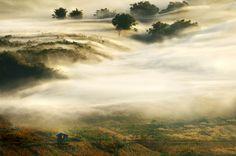 The Mist by Ekkachai Pholrojpanya on 500px