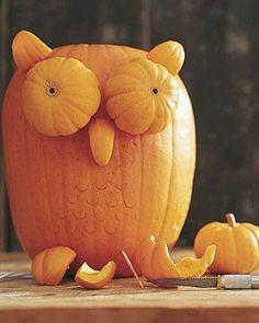 So making these pumpkin animals next year
