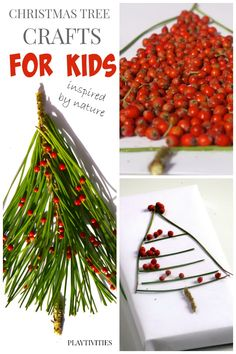 3 Christmas Tree Crafts From Nature