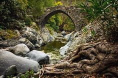 Visit one of several ancient bridges that are believed to have been built centuries ago by the Venet... - Chursina Viktoriia/Shutterstock