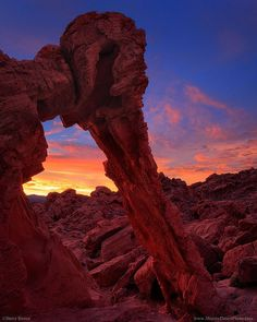 ✯ Elephant Rock Arch - Valley of Fire State Park in Nevada's Mojave Desert :: Steve Sieren Photography ✯