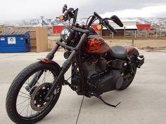 custom Fork Tubes?? - Harley Davidson Forums