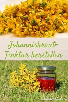 Simply make your own St. Healthy Herbs, Healthy Recipes, Herbal Essences, Natural Herbs, Natural Cosmetics, Home Remedies, Herbalism, Food And Drink, Pumpkin