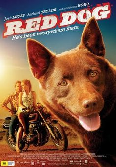 Red Dog movie. Kelpies are the BEST!