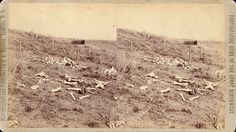 190-View-of-Custer-Battlefield.jpg 910×512 pixels