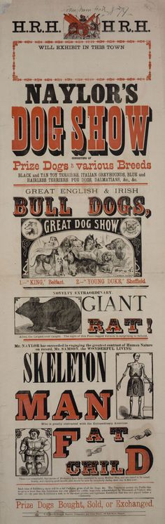The 19th century saw an explosion in cheaply produced printed posters and adverts, and the development of writing styles and graphic techniques that have influenced advertising ever since. The combination of varied and colourful typography, arresting imagery, short exclamatory sentences, and occasionally surreal content, was typical of the Victorian period.