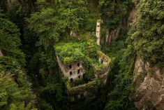 Photos Of Nature Winning The Battle Against Civilization - Old Abandoned Mill In Sorrento, Italy Abandoned Library, Abandoned Ships, Abandoned Buildings, Abandoned Places, Abandoned Mansions, Sorrento Italia, Top Photos, Photos Du, Pictures