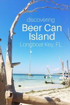 Beer Can Island is a beautiful little beach covered in driftwood, located at the very North end of Longboat Key.:
