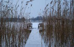Kładka wśród trzcin -Jezioro Raduń(Wałcz).