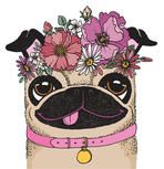 A quirky drawing of a pug wearing a flower crown. Sketchy vector illustration.