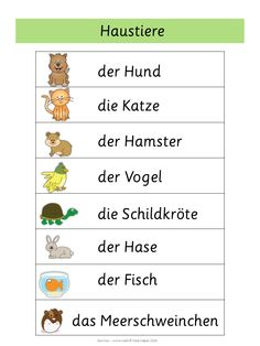 German Word Walls - Basic Vocabulary - New Ideas German Grammar, German Words, French Lessons, Spanish Lessons, Germany For Kids, Learning Websites For Kids, Alphabet Writing, Spanish Alphabet, German Resources