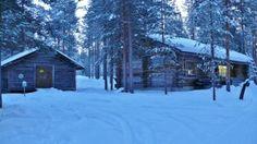 Nordic Adventures log cabin at Kemijärvi Civilization, Cabins, Hunting, Bird, Adventure, Outdoor, Outdoors, Birds, Adventure Movies
