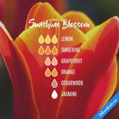 Sunshine Blossom - Essential Oil Diffuser Blend