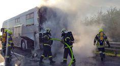 Röntgenbus auf A1 bei St. Pölten in Brand geraten