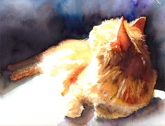 Cat in the Light. Watercolor on paper.