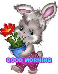 Good Morning Smiley, Good Morning Clips, Good Morning Saturday, Good Morning Gif, Good Morning Picture, Good Morning Flowers, Good Night Image, Good Morning Greetings, Morning Pictures