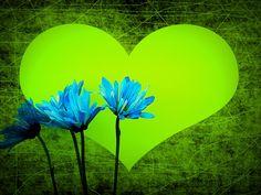 Il blog del Gufo Saggio - Spam poetico ed altro: SMS poetico: Buongiorno
