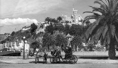 Vista al Cerro Castillo (1955)  (X)