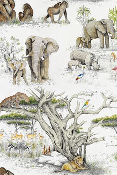 MASAI MARA is inspired by a nature reserve located in southwest Kenya, this design depicts a calm animal world where elephants, primates and parrots mingle peacefully. #kenya #reserve #africa #wallpaper #animals #interiordesign Custom Carpet, Print Wallpaper, Primates, Nature Reserve, Parrots, Kenya, Elephants, Kids Bedroom, Moose Art