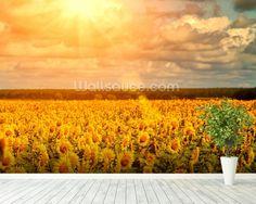 Summer Sunflowers mural wallpaper room setting
