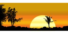 Maui, Hawaii, Sonnenuntergang, Landschaft, Bäume