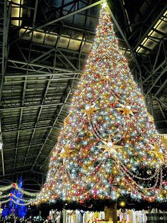 Disney Christmas, Christmas Love, Merry Christmas, Les Themes, Images, Photos, Around The Worlds, Holiday Decor, Beautiful