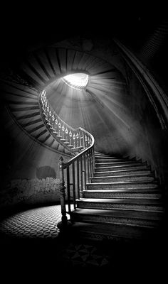 Staircase in an abandoned building. Amazing light effect. Looks like the stairway to Heaven. Black N White, Black White Photos, Black And White Photography, White Art, White Light, White Gold, Light And Shadow, Stairways, Belle Photo