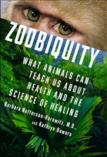 Zoobiquity explores how animal and human commonality can be used to diagnose, treat, and heal patients of all species. Both authoritative and accessible, presenting cutting-edge research through captivating narratives, this provocative book encourages us to see our essential connection to all living beings. Watch The Agenda's interview with the author here:   http://www.youtube.com/watch?v=rtPytXO7fWY=plcp