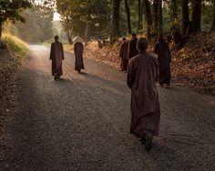 """Nossa prática é descobrir o nosso verdadeiro lar. Quando respiramos, respiramos de modo que podemos encontrar nosso verdadeiro lar. """"Quando damos um passo, podemos dar um passo de tal forma que tocamos o nosso verdadeiro lar com nossos pés."""" Thich Nhat Hanh  #now #nowmaste #namaste"""