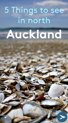 5 off the beaten path places to see in northern Auckland, New Zealand